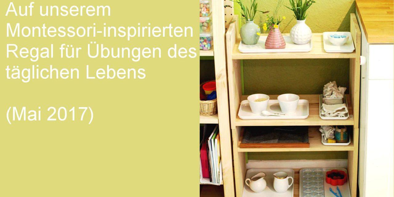 Auf unserem Regal: Montessori-inspirierte Übungen des täglichen Lebens (Mai 2017)