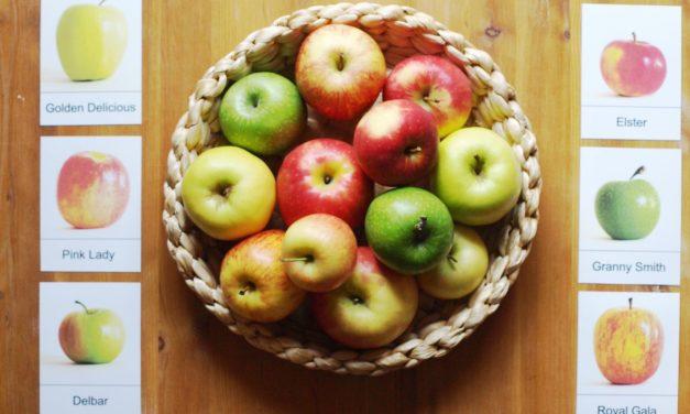 Apfel-Themenwoche- Plus Download