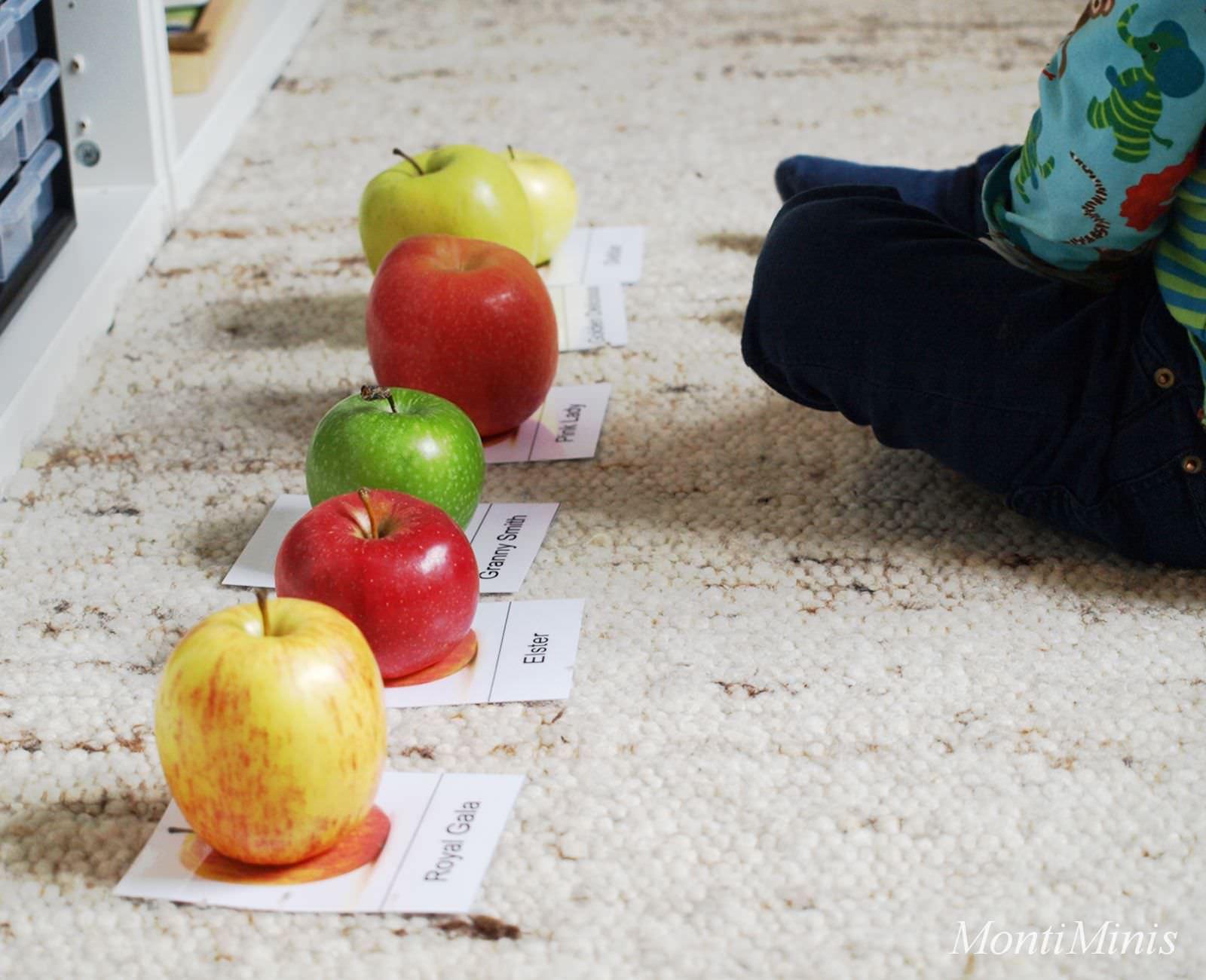 Fein Küche Dekorationen äpfel Fotos - Küchen Design Ideen ...