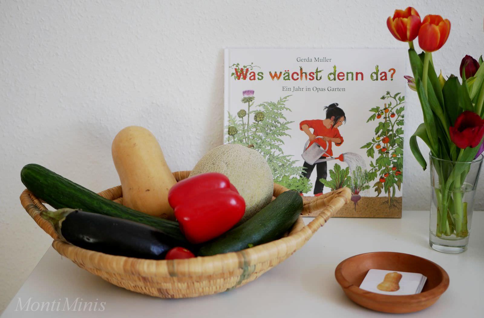 Fruchtgemüse – wir lernen Gemüsefamilien kennen