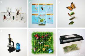 Materialien und Bücher zum Thema Insekten für Kinder, Montessori zu Hause, Lernmaterial, Insektenstudien, Vorbereitete Umgebung | MontiMinis.com