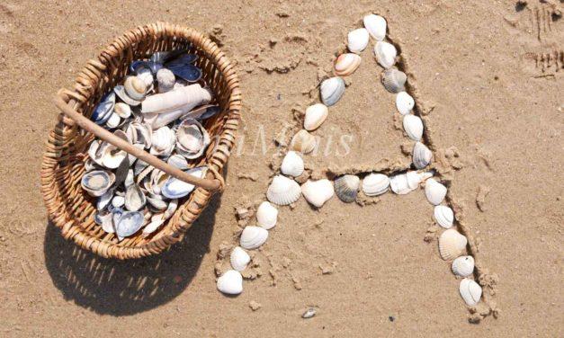 Montessori am Strand