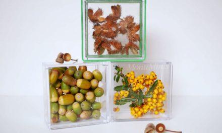 DIY-befüllbare Fensterbausteine für Kinder