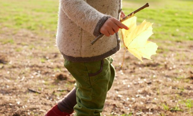 Herbstblätter: 5 einfache kreative Ideen für Kinder