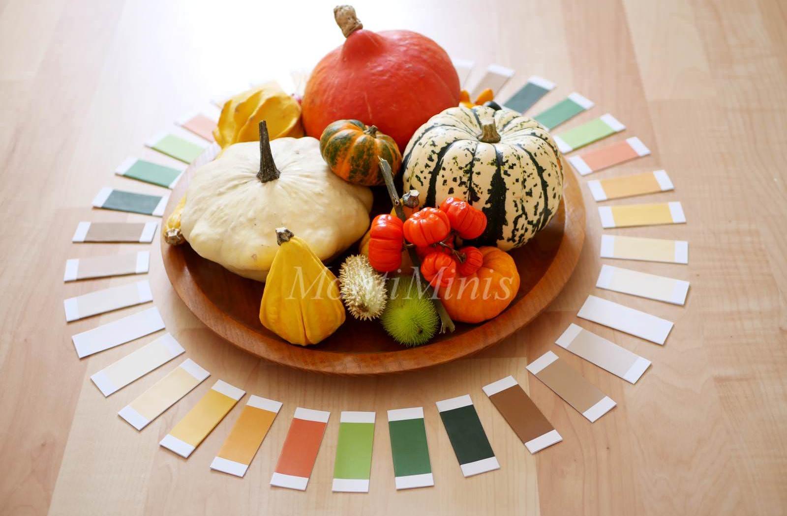 Herbst-Spielidee mit DIY-Montessori-Farbtäfelchen (inkl.Druckvorlage)