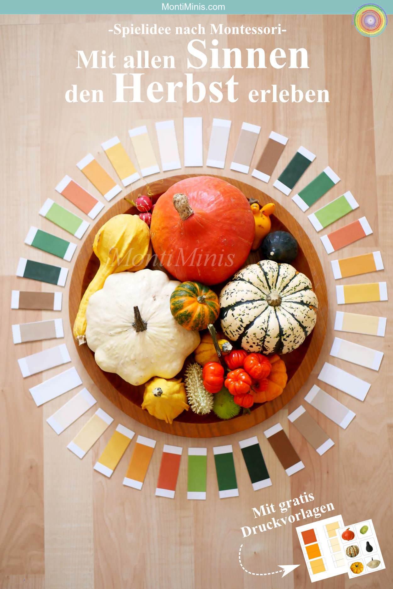 Herbst, Montessori Spielidee selbstgemacht, Montessori DIY Farbtäfelchen, Download, Herbstidee, Kürbisse, Farbspiel, | MontiMinis.com
