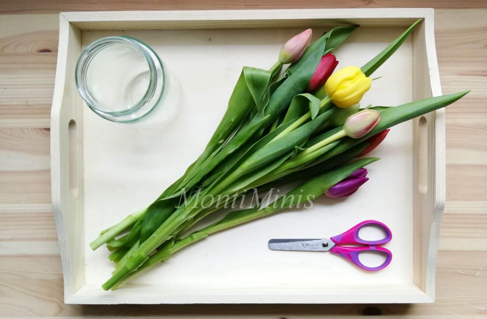 Blumen arrangieren – Eine Übung des täglichen Lebens nach Montessori