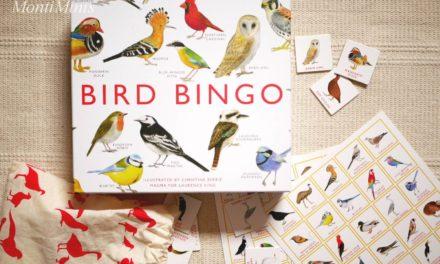 Spiele-Tipp: Vogel-Bingo
