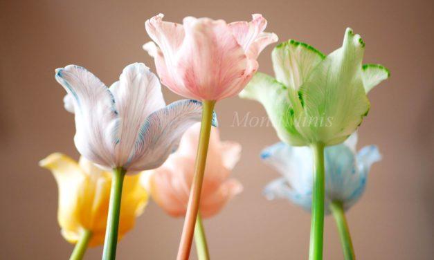 Durstige Blumen – Blumen färben mit Lebensmittelfarben (Ein einfaches Experiment für Kinder)