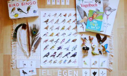 Thema der Woche: Vögel (inkl. Tipps zu Montessori-freundlichen Materialien und Büchern)