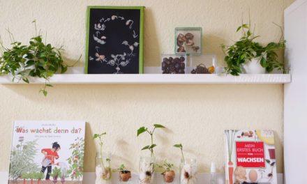 Spannende Pflanzenexperimente für Kinder