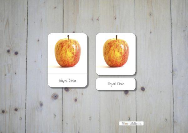 Montessori Apfelsorten Nomenklaturkarten Apfel Montessori Apple 3 Part-Cards