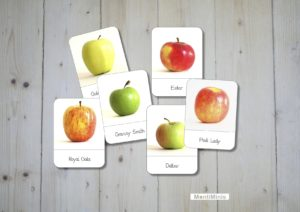 Apfelsorten Nomenklaturkarten Apfel Montessori Apple 3 Part-Cards