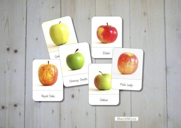 Apfelsorten Nomenklaturkarten Apfel Montessori Apple 3 Part-Cards
