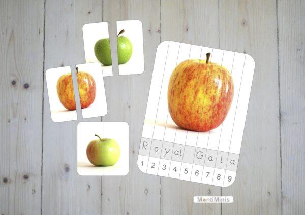 Apfel Puzzle Spielideen für Kinder Montessori Druckvorlage Printable Unterrichtsidee