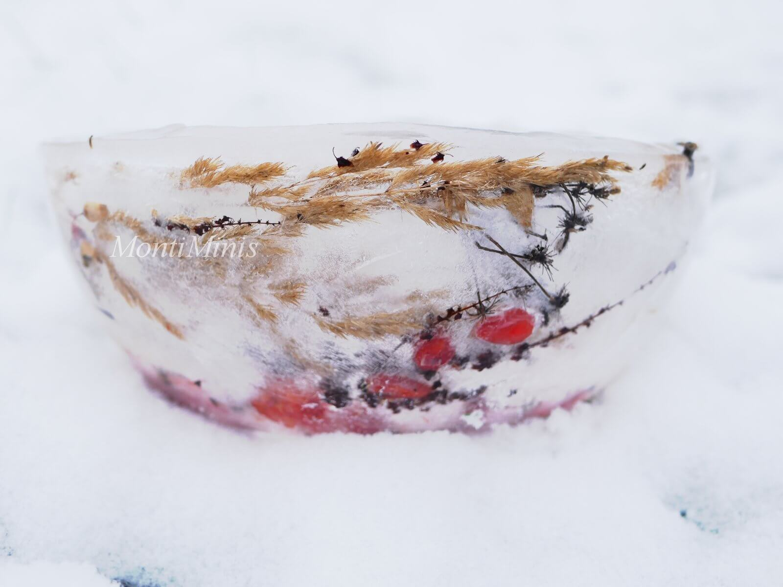 Eislaterne, Eislicht, DIY, Winteraktivitäten mit Kindern, Naturkinder, Achtsamkeit, Naturschätze sammeln, Basteln mit Kindern, Montiminis.com