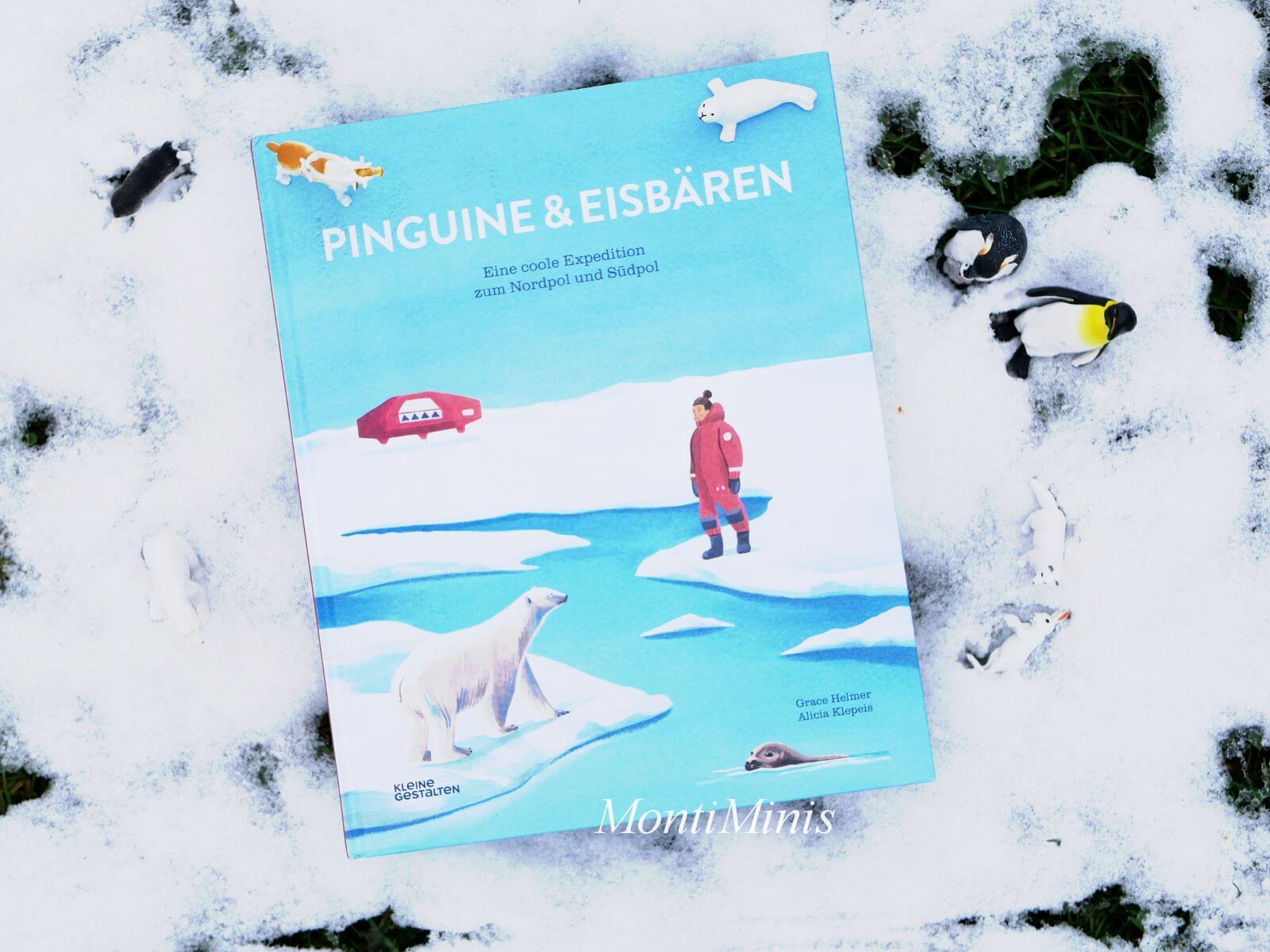 Pinguine und Eisbären - Polarforscherbuch für Kinder, Kinderbuchtipp, Polarbuch, Winterbuch, MontiMinis.com